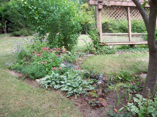 fall garden2