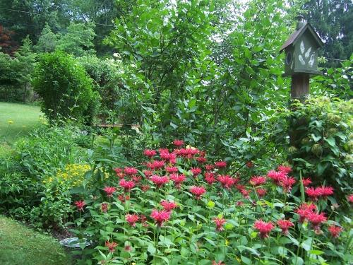 Garden tour12